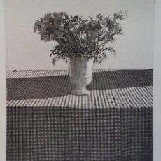 Arte: MALTE SARTORIUS: BODEGÓN, 1983 / FIRMADO Y NUMERADO A LÁPIZ. Lote 52752711