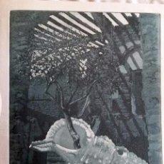 Arte: GRABADO AGUAFUERTE FIRMADO JENS RUSCH. Lote 53265037