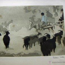 Arte: GRABADO DE EBERHARD SCHOLTTER. Lote 53272656
