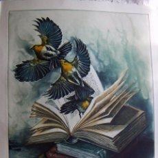 Arte: GRABADO AGUAFUERTE FIRMADO JENS RUSCH. Lote 53273373