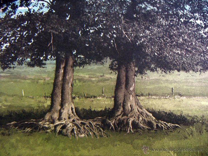 Arte: Grabado Aguafuerte firmado Jens Rusch - Foto 2 - 53490496