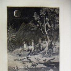Arte: GRABADO AGUAFUERTE DE PETER PROKSCH. Lote 53518264