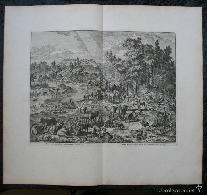 1729 - GRABADO - BIBLIA - ADAN PUSO NOMBRES A LOS ANIMALES - JOHANNES LUYKEN - GRAN FORMATO (Arte - Grabados - Antiguos hasta el siglo XVIII)