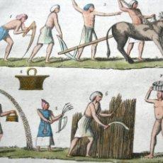 Arte: GRABADO 1840 - EGIPTO - AGRICULTURA - COLOREADO A MANO - ILUMINADO. Lote 56403419