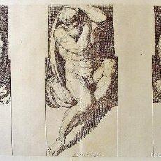 Arte: TRES DESNUDOS MASCULINOS. ARNOLD VAN WESTERHOUT (1651-1725). GRABADOR: CARLO CESIO. SIGLO XVII. Lote 58127748