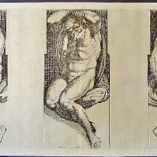 Arte: TRES DESNUDOS MASCULINOS. ARNOLD VAN WESTERHOUT (1651-1725). GRABADOR: CARLO CESIO. SIGLO XVII. Lote 58127812