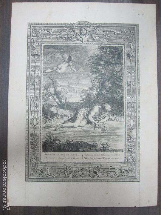 NARCISSE CHANGE EN FLEUR. B. PICART. 44,3X32,3 CM (Arte - Grabados - Antiguos hasta el siglo XVIII)
