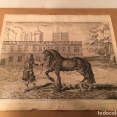 Arte: 1743 - WELBECK. LE SUPERBE CHEVAL DE SPANIE - NEWCASTLE - GASPARD DE SAUNIER - CABALLOS. Lote 61682368