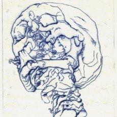 Arte: CRÁNEO ROTO. GRABADO (PUNTA SECA) SOBRE PAPEL. 20 X 29 CM. OBRA ORIGINAL FIRMADA.. Lote 64476107