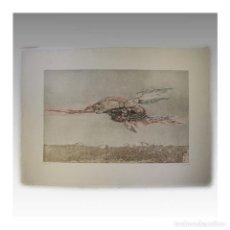 Arte: LUCIO MUÑOZ AGUAFUERTE A LA RESINA (1980) - LUCIO MUÑOZ. Lote 54241526