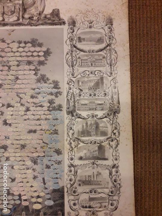 Arte: GRABADO GENEALOGIA DE LOS REYES DE ESPAÑA Y DE PORTUGAL 1854 JAIME JOSE MORAGUES - Foto 6 - 81270748