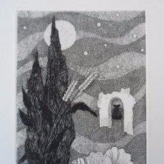 José Hernández Quero (Granada 1930) grabado de 20x29 en papel de 34x49cms. Firmado y numerado 34/125