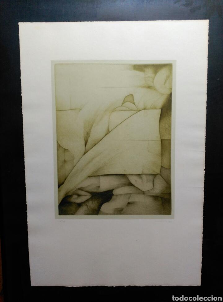 Arte: 13 Grabados Paco Aguilar, Rafael Alberti, Rafael Pérez Estrada carpeta de grabados ALOMA - Foto 3 - 85058274