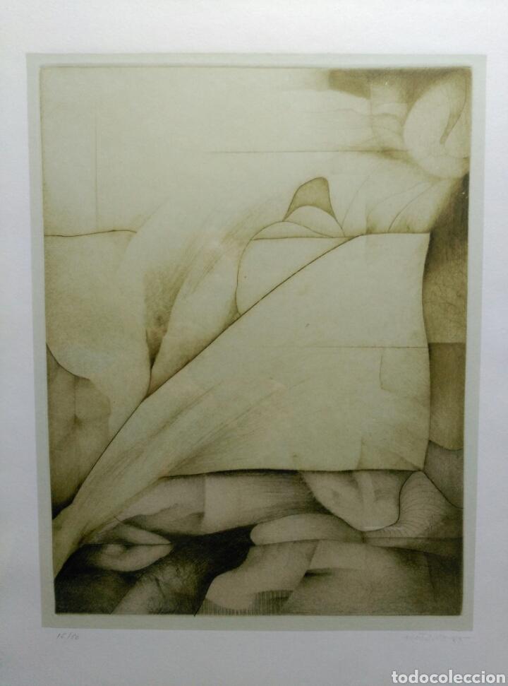 Arte: 13 Grabados Paco Aguilar, Rafael Alberti, Rafael Pérez Estrada carpeta de grabados ALOMA - Foto 18 - 85058274
