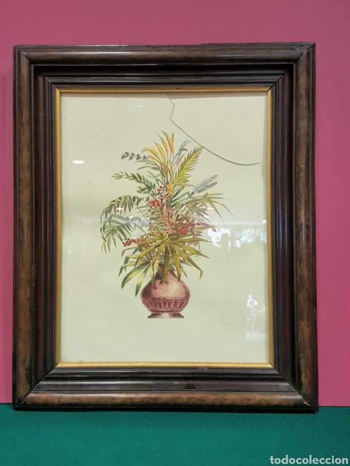 Arte: Pareja de grabados enmarcados de bodegones de flores. - Foto 3 - 85533660