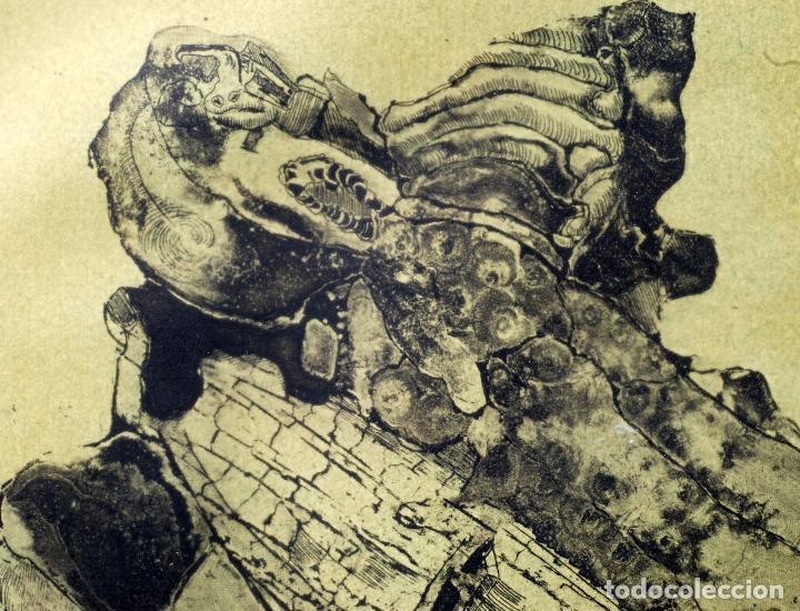Arte: Grabado composición firmado Lucio Muñoz 1974 [11/50] - Foto 3 - 86091488
