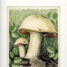 Arte: GRABADO ORIGINAL DE JOSE LUIS RODRIGUEZ RIC. 1992. Lote 86736604