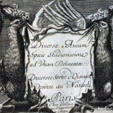Arte: DIVERSAE AVIUM SPECIE STUDIOSISSIME AD VITAM DELINEATAE. ED. JOLLAIN. PARIS. CIRCA 1680. Lote 90037432