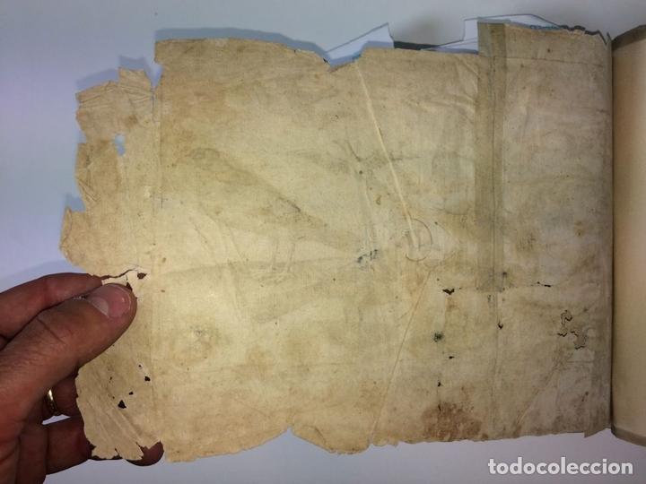 Arte: DIVERSAE AVIUM SPECIE STUDIOSISSIME AD VITAM DELINEATAE. ED. JOLLAIN. PARIS. CIRCA 1680 - Foto 5 - 90037432