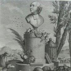 Arte: AGUAFUERTE. RETRATO JEAN-BAPTISTE FRANCOIS ROSIER. AÑO 1795. Lote 99555447
