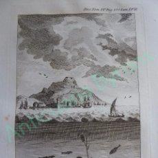 Art: GRABADO DICC HISTÓRICO DE LOS ARTES DE LA PESCA NACIONAL TOMO IV LÁMINA LVII AÑO 1793 (34,3 X 24 CM). Lote 103393239