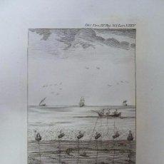 Art: GRABADO DICC HISTÓRICO DE LOS ARTES DE LA PESCA NACIONAL TOM IV LÁMINA LXXV AÑO 1793 (33 X 23,5 CM). Lote 103525147