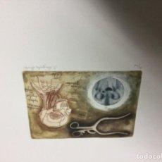 Arte: GRABADO DE GONZÁLEZ DURAN. Lote 105020295