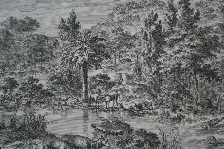 Arte: 1729 - GRABADO - BIBLIA - ADAN PUSO NOMBRES A LOS ANIMALES - Johannes Luyken - GRAN FORMATO - Foto 3 - 55713149