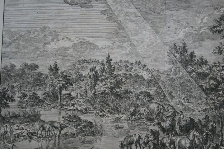 Arte: 1729 - GRABADO - BIBLIA - ADAN PUSO NOMBRES A LOS ANIMALES - Johannes Luyken - GRAN FORMATO - Foto 4 - 55713149