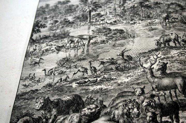 Arte: 1729 - GRABADO - BIBLIA - ADAN PUSO NOMBRES A LOS ANIMALES - Johannes Luyken - GRAN FORMATO - Foto 5 - 55713149