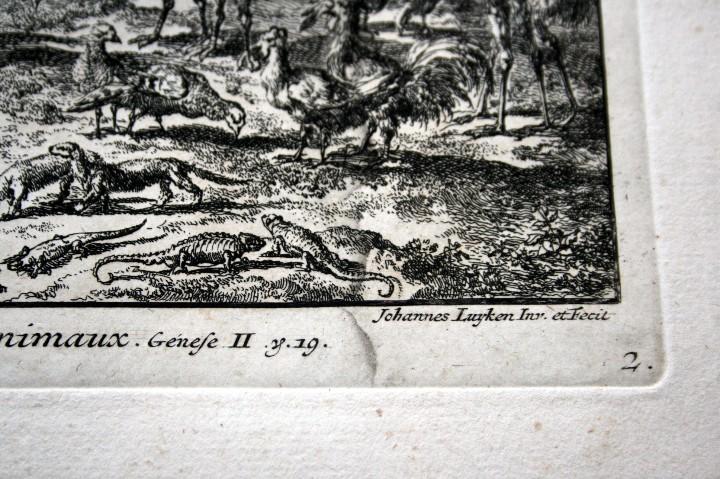 Arte: 1729 - GRABADO - BIBLIA - ADAN PUSO NOMBRES A LOS ANIMALES - Johannes Luyken - GRAN FORMATO - Foto 7 - 55713149