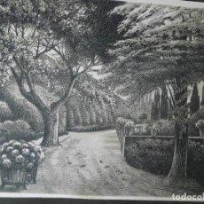 Arte: ANTIGUO GRABADO DE J. CAMINS. Lote 105813711