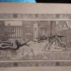 Arte: ANTIGUO GRABADO HISTORIA DE LA LITERATURA - LEER - FIDELIDAD DE UN PERRO. Lote 108105495