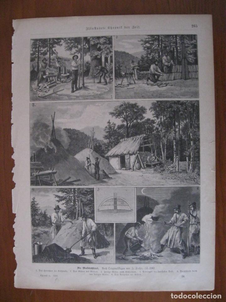 ESCENAS DE TRABAJO EN EL BOSQUE, 1888. ANÓNIMO (Arte - Grabados - Modernos siglo XIX)