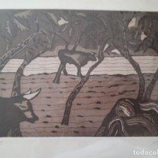 Arte: AGUAFUERTE. MANUEL NOVOA.. Lote 114641907