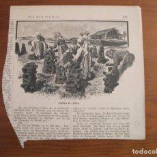 Arte: MUJERES COLOCANDO TURBA-CARBÓN PARA SU SECADO, 1899. ANÓNIMO. Lote 115191779