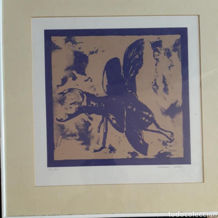 Arte: Fernando Baños (Sevilla 1948). Serigrafía numerada y firmada. - Foto 2 - 116424242