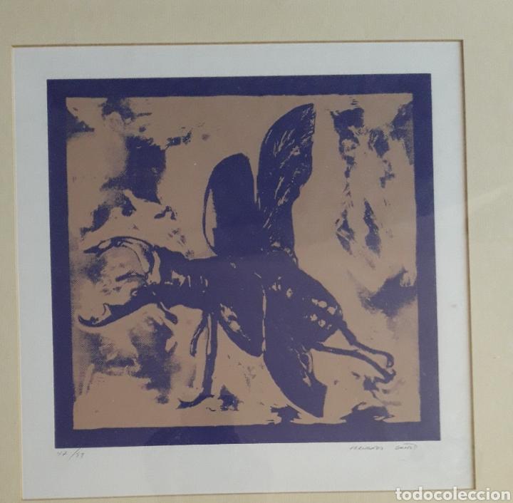 Arte: Fernando Baños (Sevilla 1948). Serigrafía numerada y firmada. - Foto 3 - 116424242