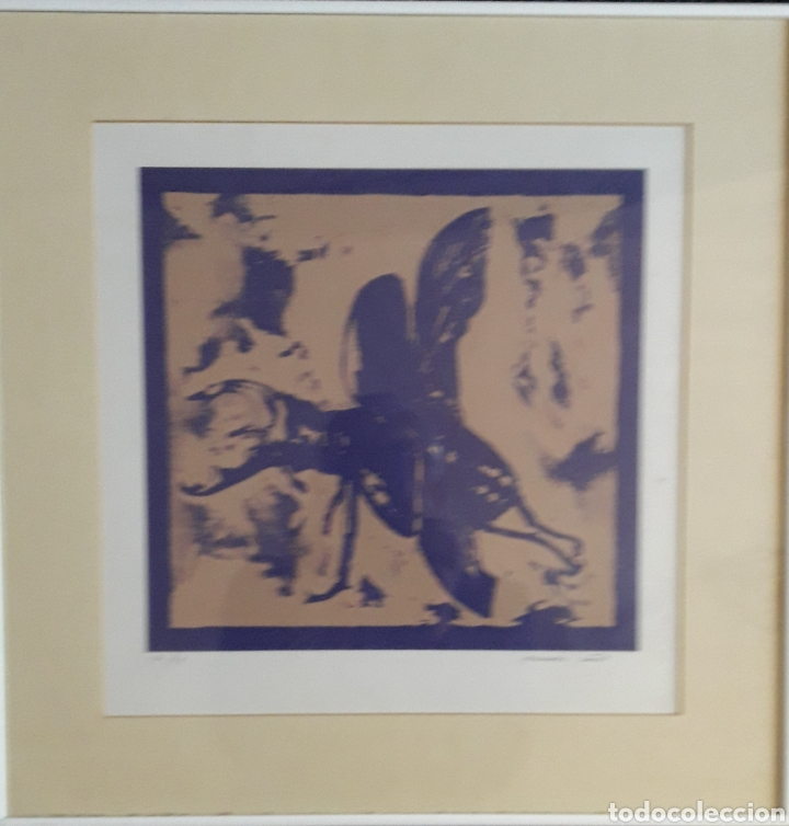 Arte: Fernando Baños (Sevilla 1948). Serigrafía numerada y firmada. - Foto 5 - 116424242