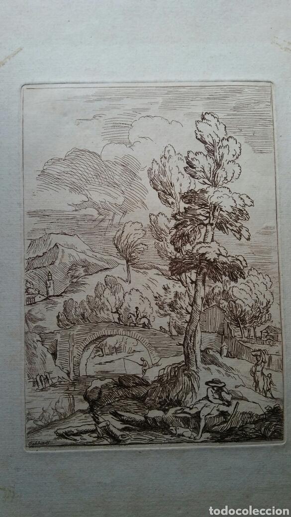 Arte: Grabado Antonio Domenico GABBIANI (1652-1726) - original - Foto 3 - 117061556
