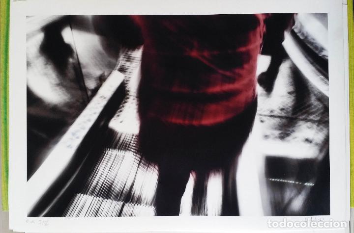 Arte: MARÍA JATO: Aberraciones / portfolio 16 fotografías / 2018 - Foto 13 - 119138555