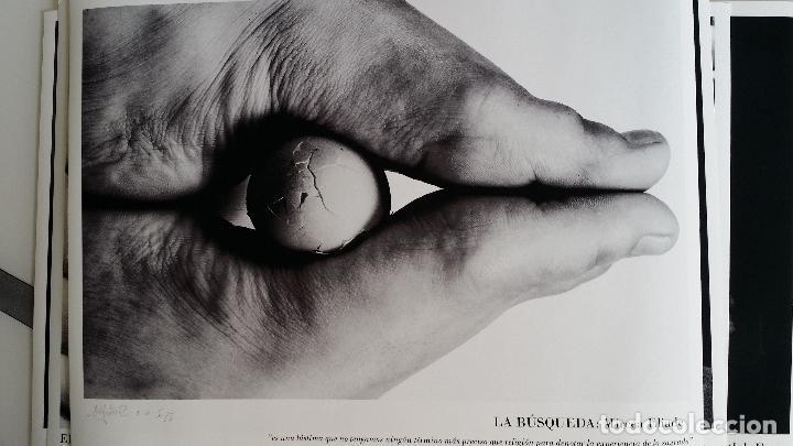 Arte: MARÍA JATO: La Consolación de la Filosofía / portfolio 15 fotografías / 2001 - Foto 7 - 119176435