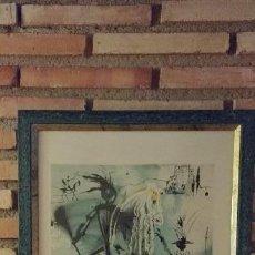 Arte: GRABADO ORIGINAL DALI FIRMADO. Lote 121144679