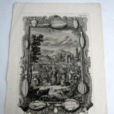 Arte: 1731 GRABADO AL COBRE PIOJOS CINNIM PEDICULI - JOHANN JAKOB SCHEUCHZER - PINZ SCULPS. Lote 125961031