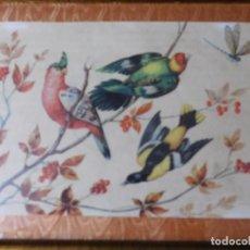 Arte: GRABADO DE PAJAROS EXOTICOS CON MARCO DE MADERA. Lote 127644079