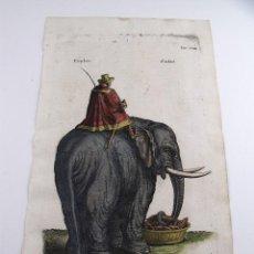 Arte: EL ELEFANTE, 1657. MERIAN/JONSTON. Lote 128442375