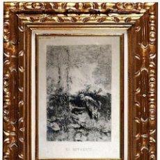 Arte: MARIANO FORTUNY I MARSAL. EL BOTÁNICO GRABADO EN PAPEL.. Lote 130865964