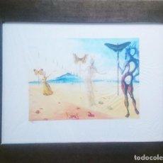 Arte: DALI - MUJERES Y MARIPOSAS. Lote 204003661