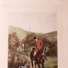 Arte: ALFRED CHARLES HAVELL (1855-1928). GRABADO COLOREADO. GONE AWAY. 1902. 77X45 CM. ESCENA DE CAZA.. Lote 132892438