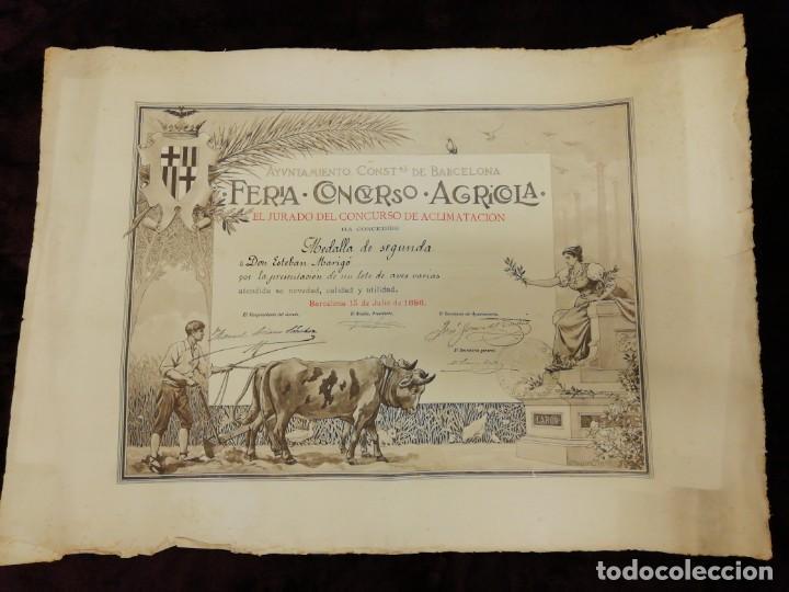 ANTIGUO GRABADO EMITIDO POR EL AYUNTAMIENTO DE BARCELONA. FERIA, CONCURSO, AGRÍCOLA. AÑO 1898. (Arte - Grabados - Modernos siglo XIX)